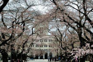 MEXT scholarship Japan university