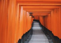 Pathway lined with torii gates representing MEXT scholarship extension